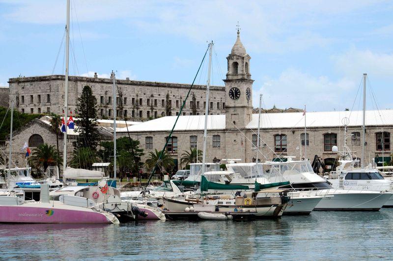 Bermuda 59